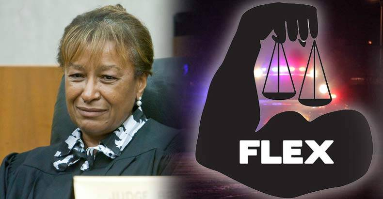 dc-judge-explains-how-and-why-you-should-flex-your-rights