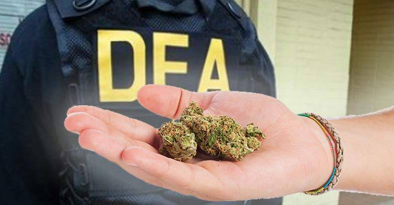 dea-chief-retreats-on-marijuana-war