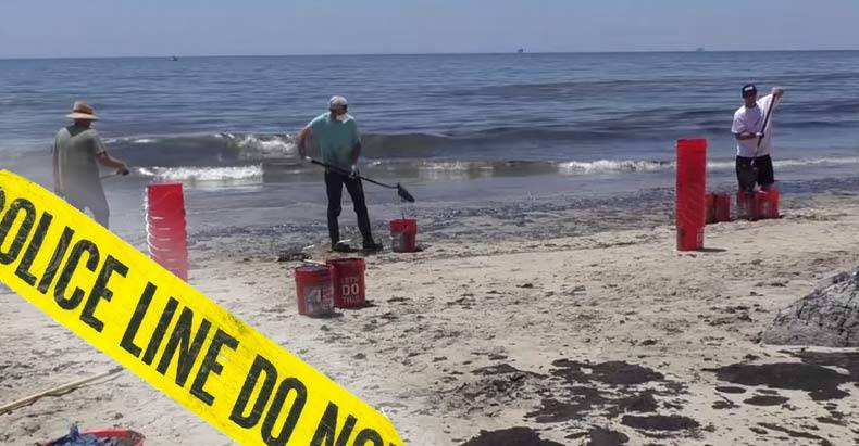 Volunteers-Threatened-with-Arrest-for-Cleaning-Up-Oil-Spill,-But-they-Stood-their-Ground