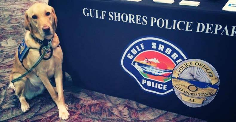 no-charges-for-alabama-cop-who-left-dog-in-car-until-it-died