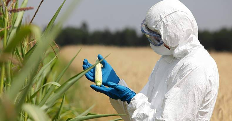 GMO-Scientist-Blows-the-Whistle-on-Monsanto