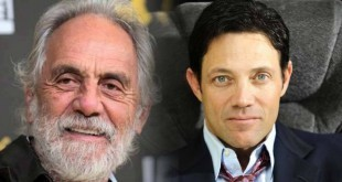 tommy-chong-wolf-of-wall-street