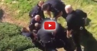 watch,-not-one-of-these-good-cops-stopped-their-other-cops-from-beating-a-mna