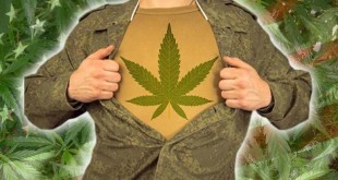 medical-cannabis-for-veterans