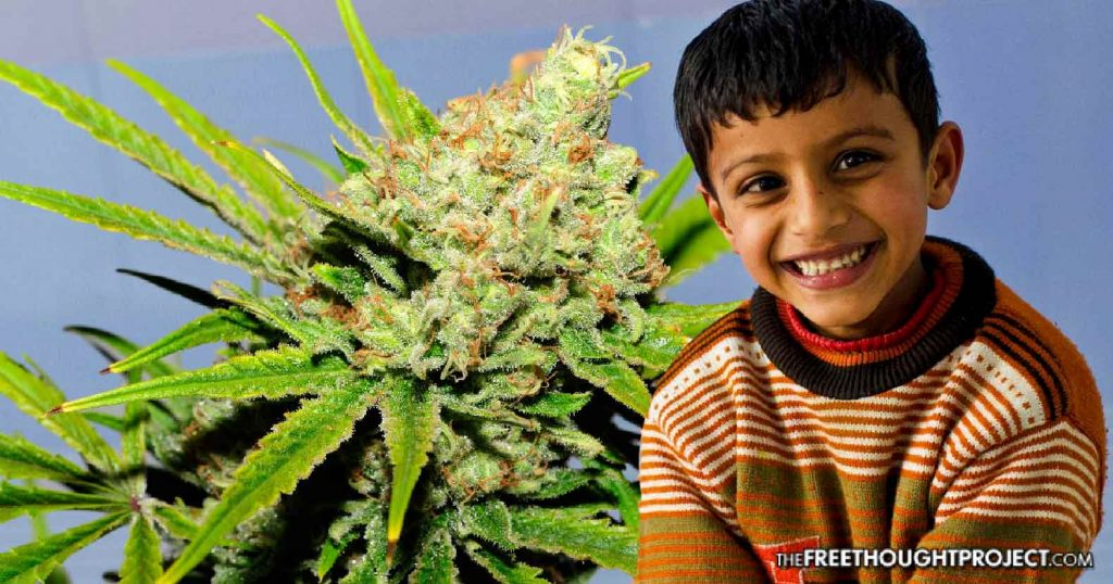 """First of Its Kind Study Finds Cannabis May Be a """"Miracle"""" Treatment for Autistic Kids"""