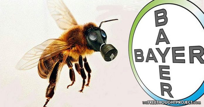 Bayer: Pesticide Profits or Bees?