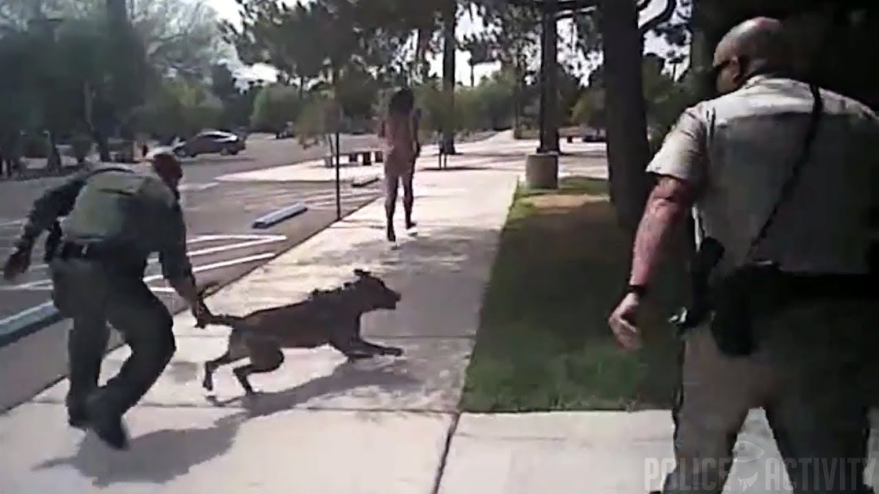 WATCH: Cops Shoot Naked Man in the Back, Sic Dog on Him