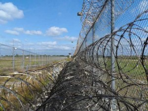 prison fence razor ribbon wire metal fence barbed