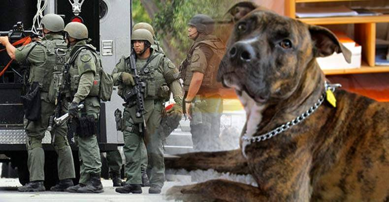 Family-Raided-by-SWAT-and-their-Dog-Shot,-for-Being-Unable-to-Pay-Utility-Bill