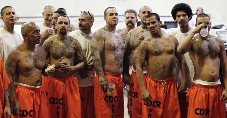 New-Study-Exposes-US-Prison-System-as-an-Epic-Failure-and-a-Factory-for-Creating-Criminals