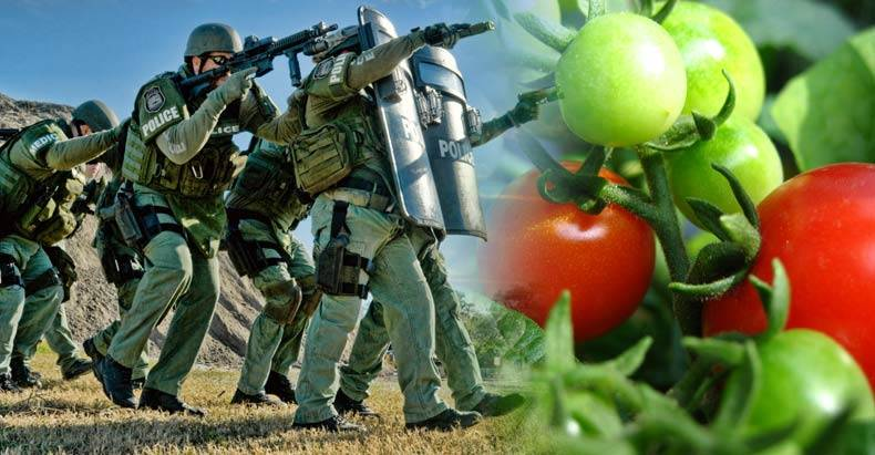 Police-Hit-Organic-Farm-with-Massive-SWAT-Raid-for-No-Reason,-Taxpayers-to-be-Held-Liable