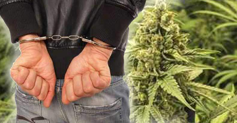 5-years-for-pot-possession
