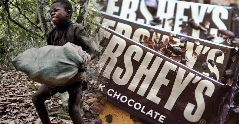 That-Chocolate-You-Love-So-Much,-Comes-with-a-Sickening-Price---Child-Slave-Labor