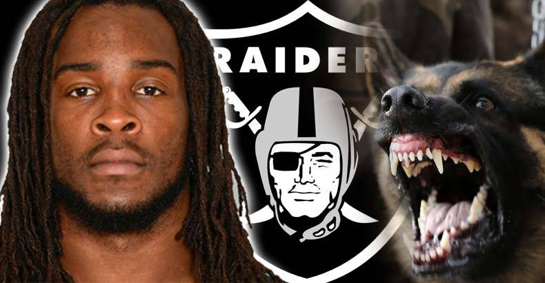 NFL-Player-Could-Face-7-Years-in-Prison-for-Barking-at-Police-K-9-in-Pre-Game-Warm-Ups