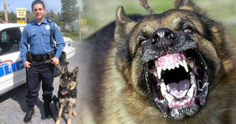 Sadistic-Cop-Forces-K9-to-Maul-59-Year-Old-Woman-Who-Was-In-Custody