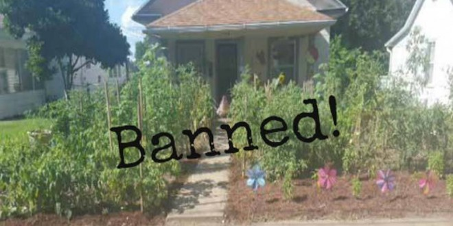 Man Charged With A Crime And Fined For Growing A Vegetable Garden
