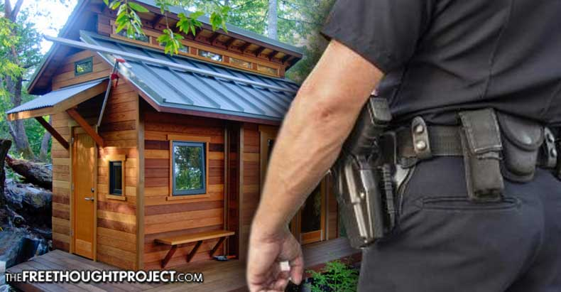 Tiny Homes Banned in U.S. at Increasing Rate as Govt Criminalizes Sustainable Living