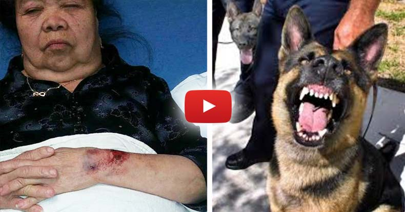 Cops Mistake 81yo Grandma in Her Backyard for a 'Suspect' Have K9 Maul Her